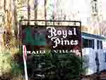 Royal Pines